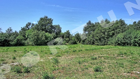 Building plot in the surroundings of Sveti Lovreč ǀ 1.618 sqm
