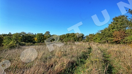 Building land 4.471 m2 near Sveti Lovrec