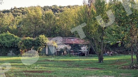 Agricultural plot with one house in the surroundings of Rovinj